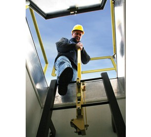 Bilco Ladderup Telescoping Safety Posts
